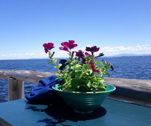 flowers-and-lake